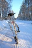 транспорт_велос�