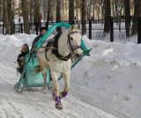 лошадь_с�