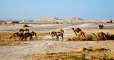Египет_пустыня_в