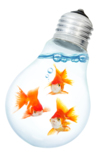 bulb_light_electricity_inspira