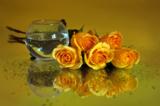цветы_розы_желты