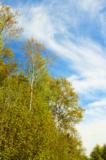 природа,_погода,_